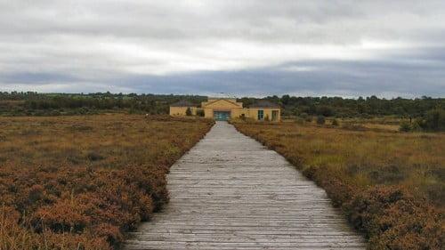Corlea Trackway Featured Photo