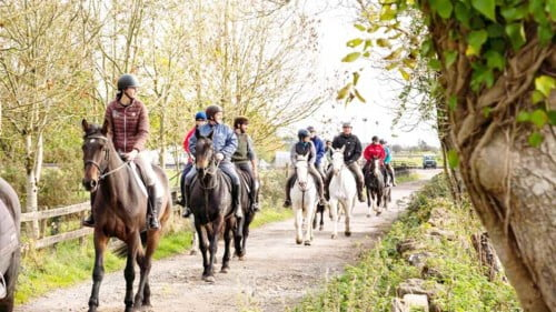 Dartfield Horse Museum Featured Photo