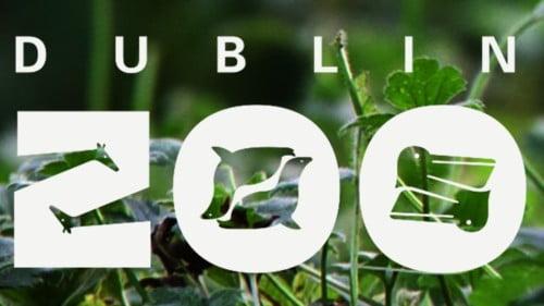 Dublin Zoo Featured Photo