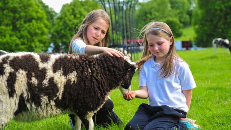 Glendeer Pet Farm Featured Photo | Cliste!