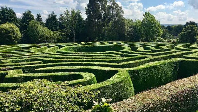 Greenan Maze Featured Photo | Cliste!