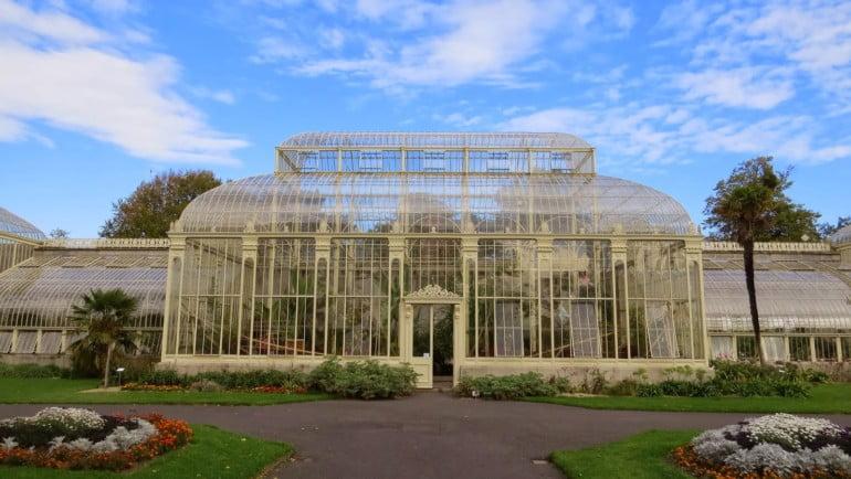 Kilmacurragh Arboretum Featured Photo | Cliste!