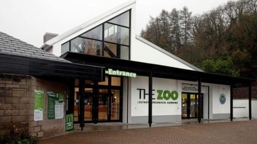 Belfast Zoo Featured Photo