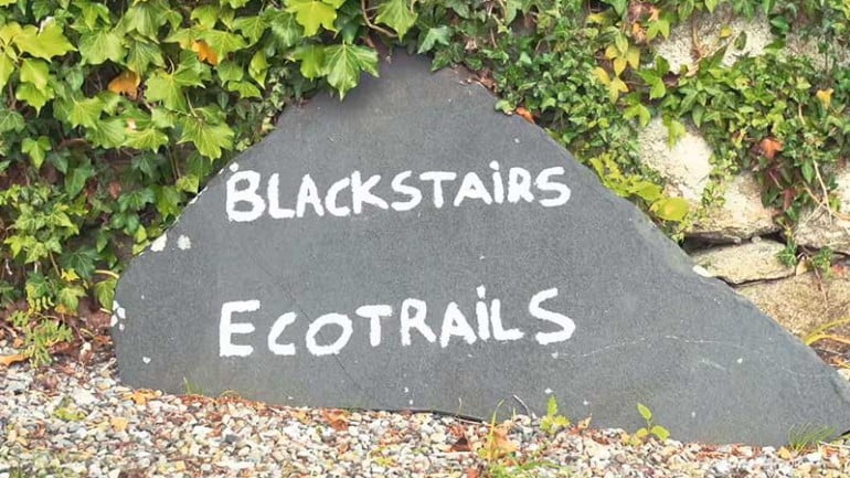Blackstairs Eco Trails Featured Photo | Cliste!