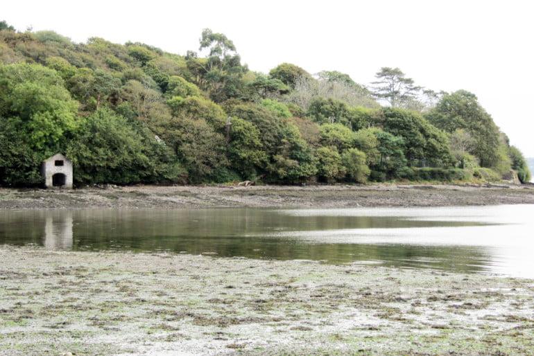 Cuskinny Nature Reserve Photo 2 | Cliste!