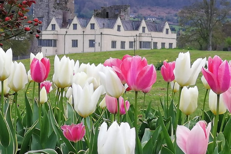 Ormond Castle Photo 2 | Cliste!